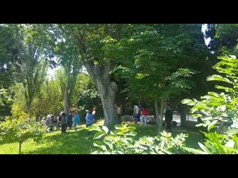 Vesak Saga Dawa 2019 vídeo 10